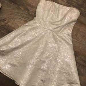 Express Silver Cocktail Dress